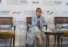 Электроблюз-минэнерго-Буславец-зеленый-курс