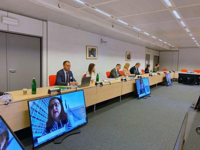 Электроблюз-минэнерго-ЕС-Зеленый-курс